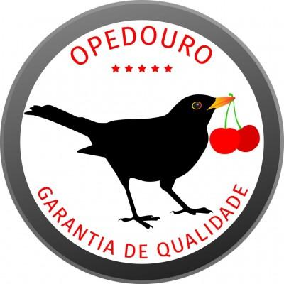 A Opedouro